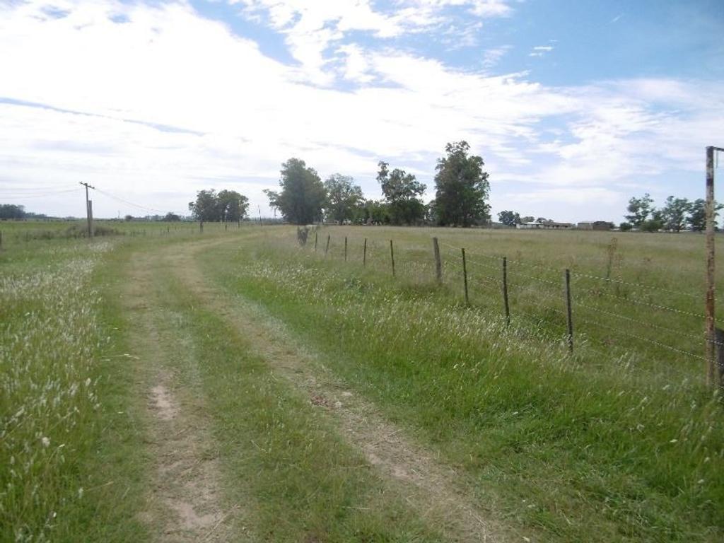venta 39 hectáreas a 26 cuadras ruta 200 35 cuadras centro gral las heras con mejoras
