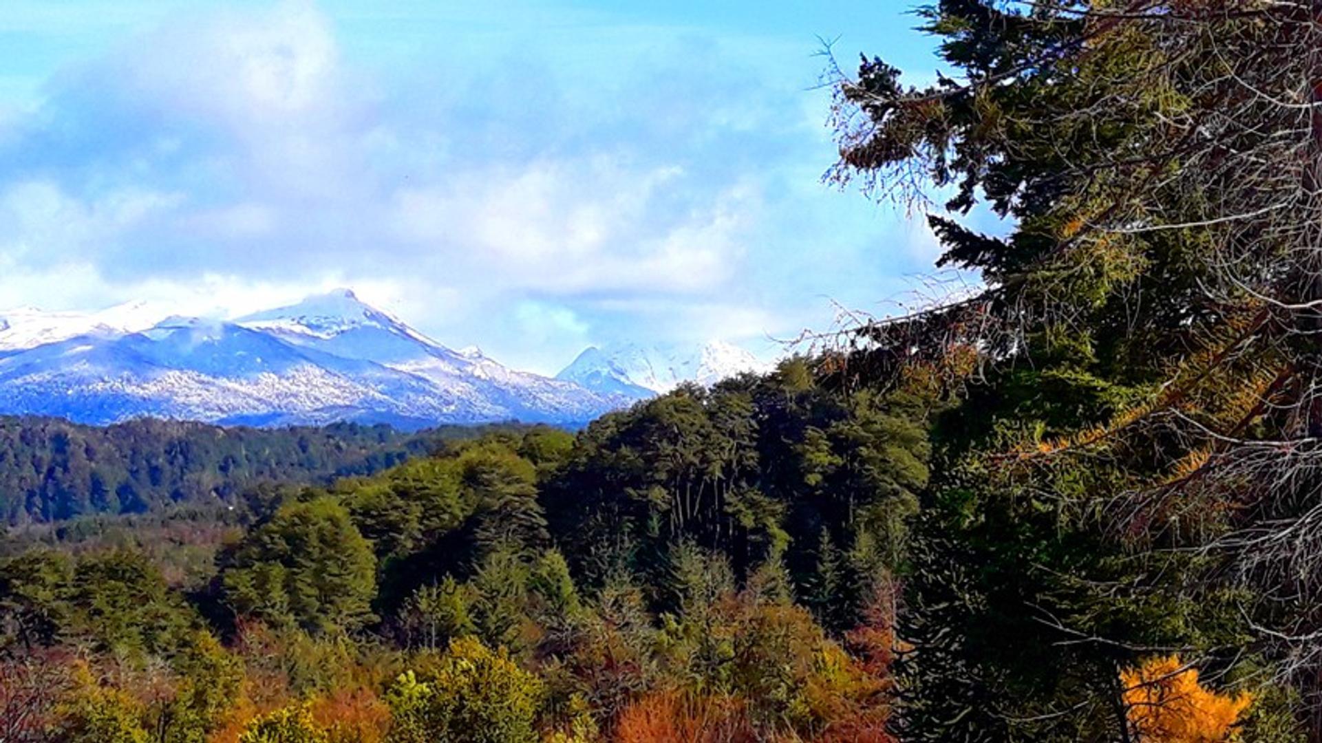 Espectacular lote en Country Cumelen , Villa la Angostura