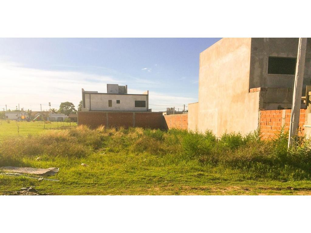 Lote en Venta La Plata Calle 79 e/ 118 y 119 Dacal Bienes Raices