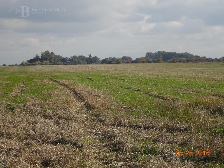 Campo /Chacra 30 hectáreas a metros de la Picaza Polo Club - Open Door Lujan