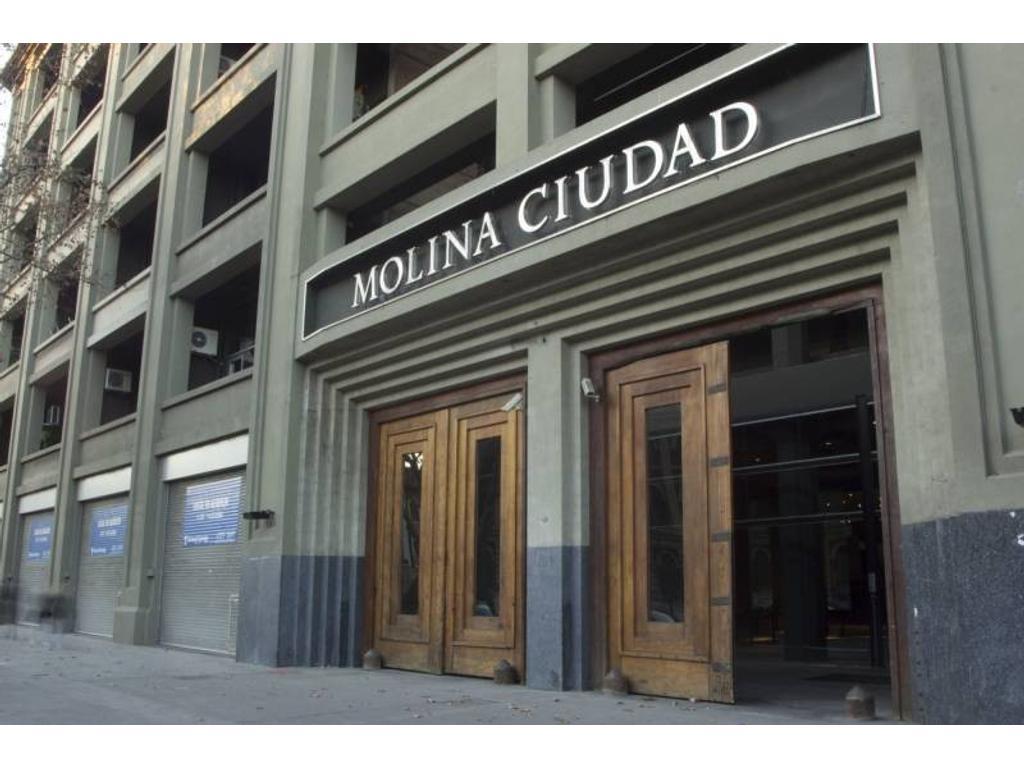 Alquiler - Molina Ciudad