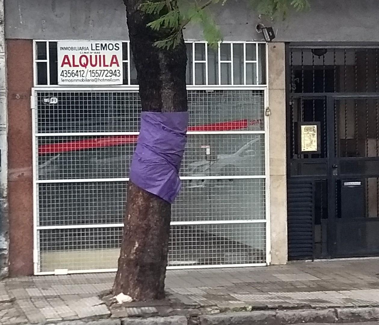 Local en Alquiler en Pichincha
