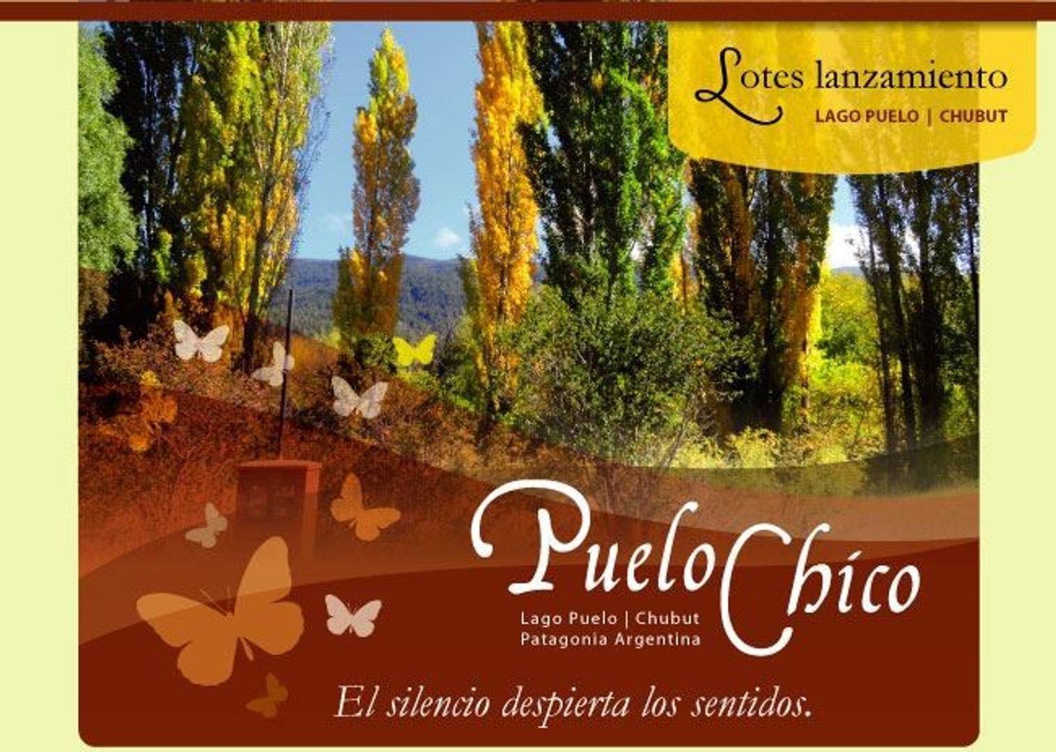 Inversión en Lotes en Puelo Chico - Lago Puelo - Chubut