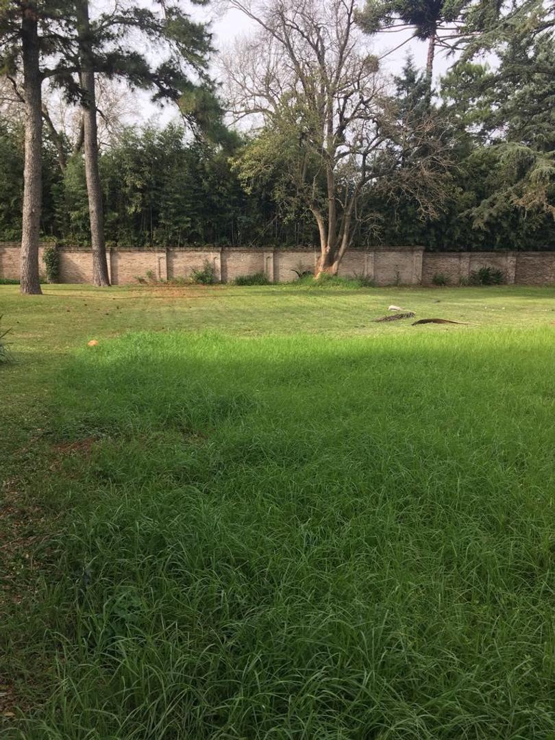 Unico Terreno Lomas de San Isidro 1100 m² S/ Av. Tomkinson