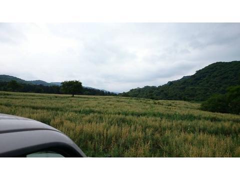 2.800 ha
