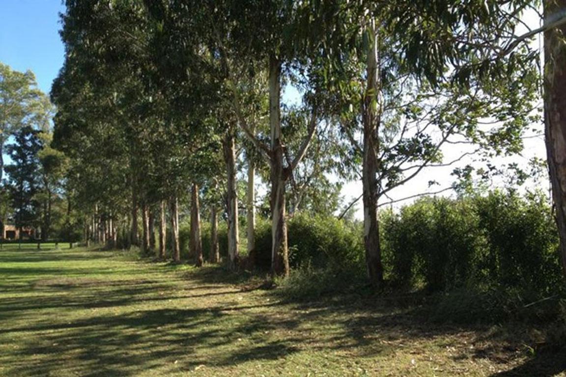 Terreno Lote  en Venta ubicado en Santo Tomas, Pilar y Alrededores - PIL3864_LP174569_1