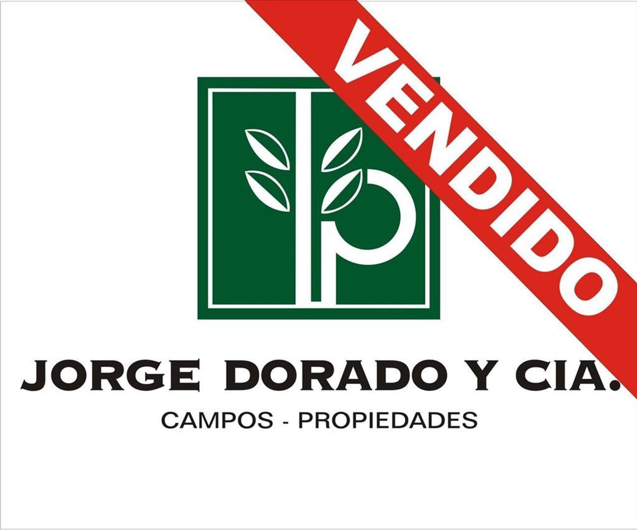 Campo en San Vicente - 783 has mixtas - Las Casuarinas