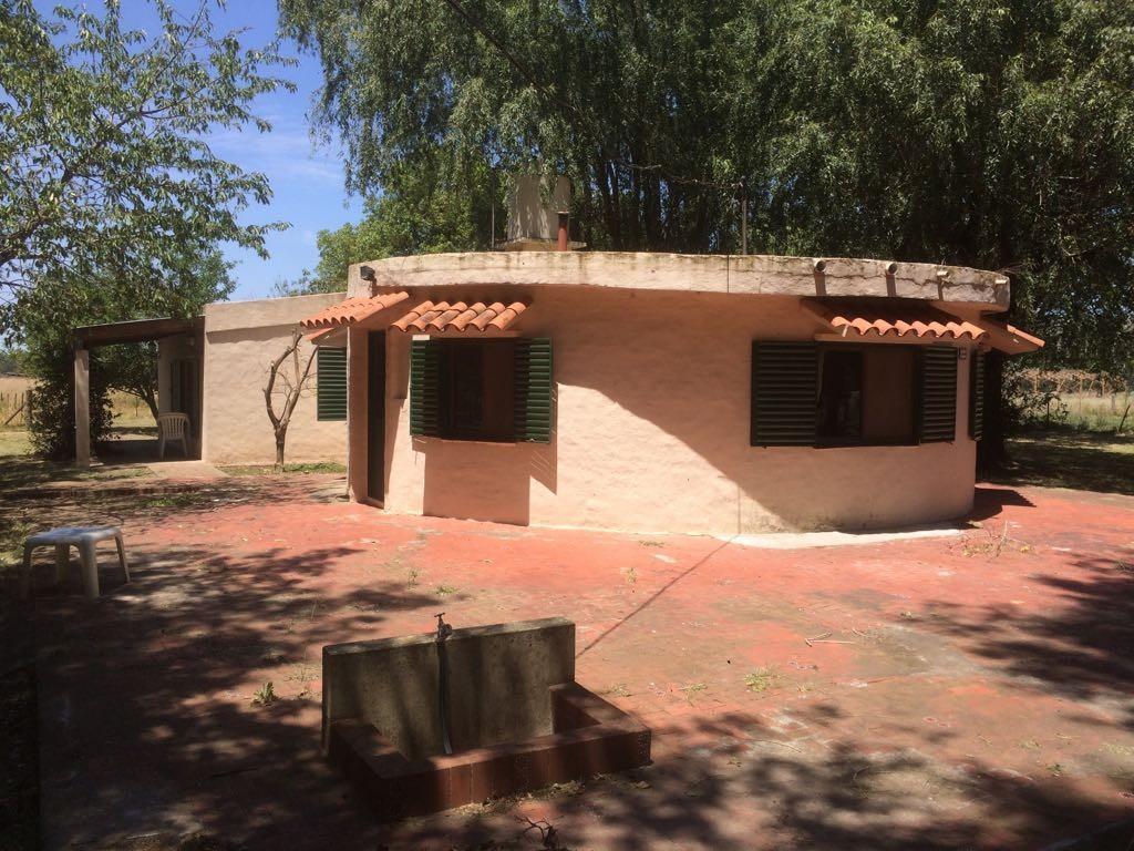 Chacra Casa Quinta en Lobos 7,68 has a 50 mts Ruta 41 Pileta