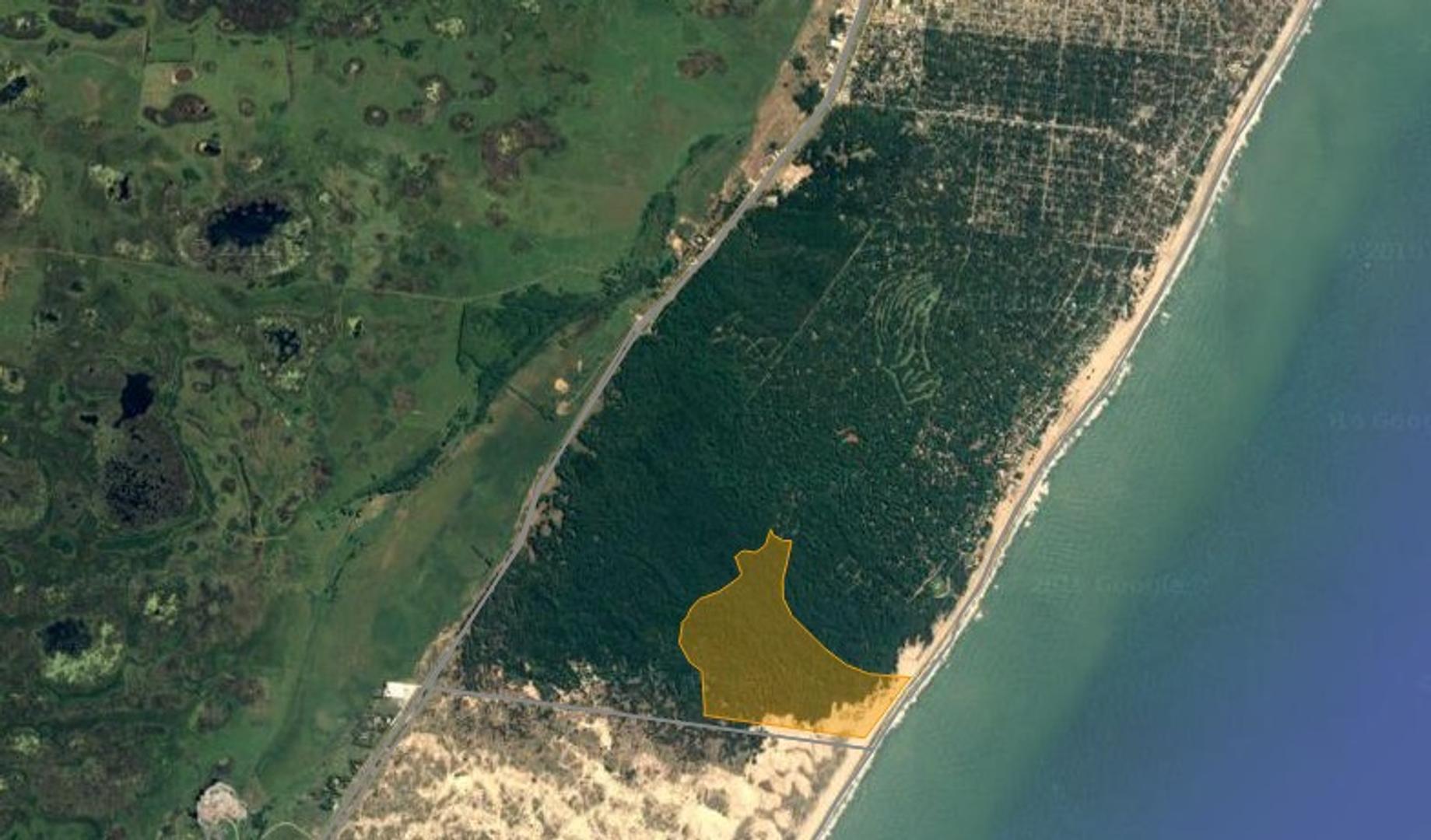 Fracción de 158 has en Pinamar con frente sobre el mar