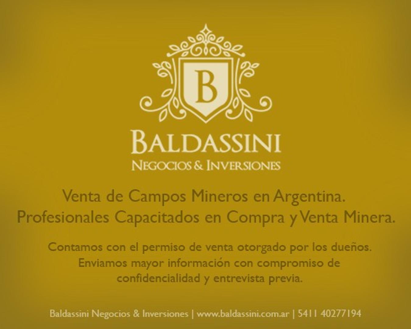 LITHIUM MINE / MINA DE LITIO EN CATAMARCA, ARGENTINA - 387 HAS.