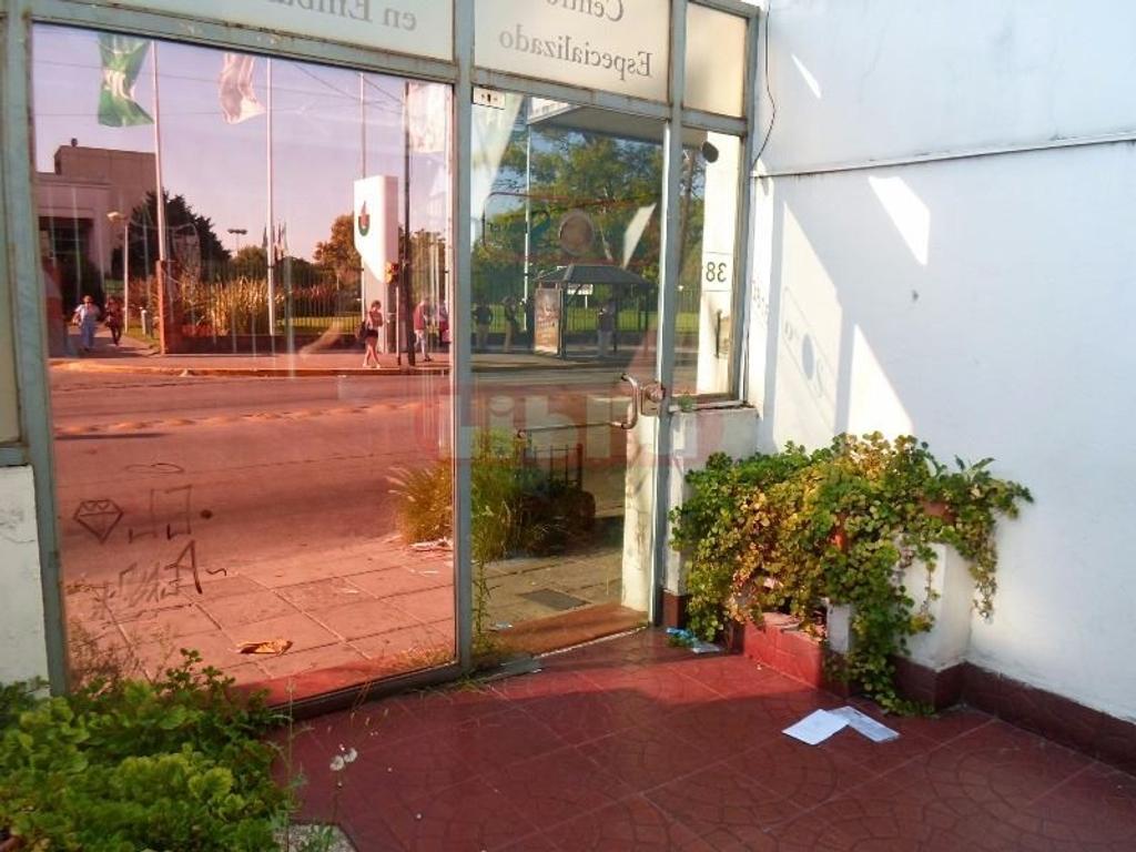 Oficina/Local 4 Amb, 2 Plantas, Jardín, y Patio.