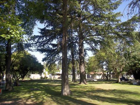 importante casa quinta para geriatrico y/o rehabilitación