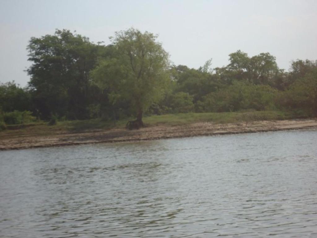 Isla de 606 hectáreas en Bella Vista Corrientes