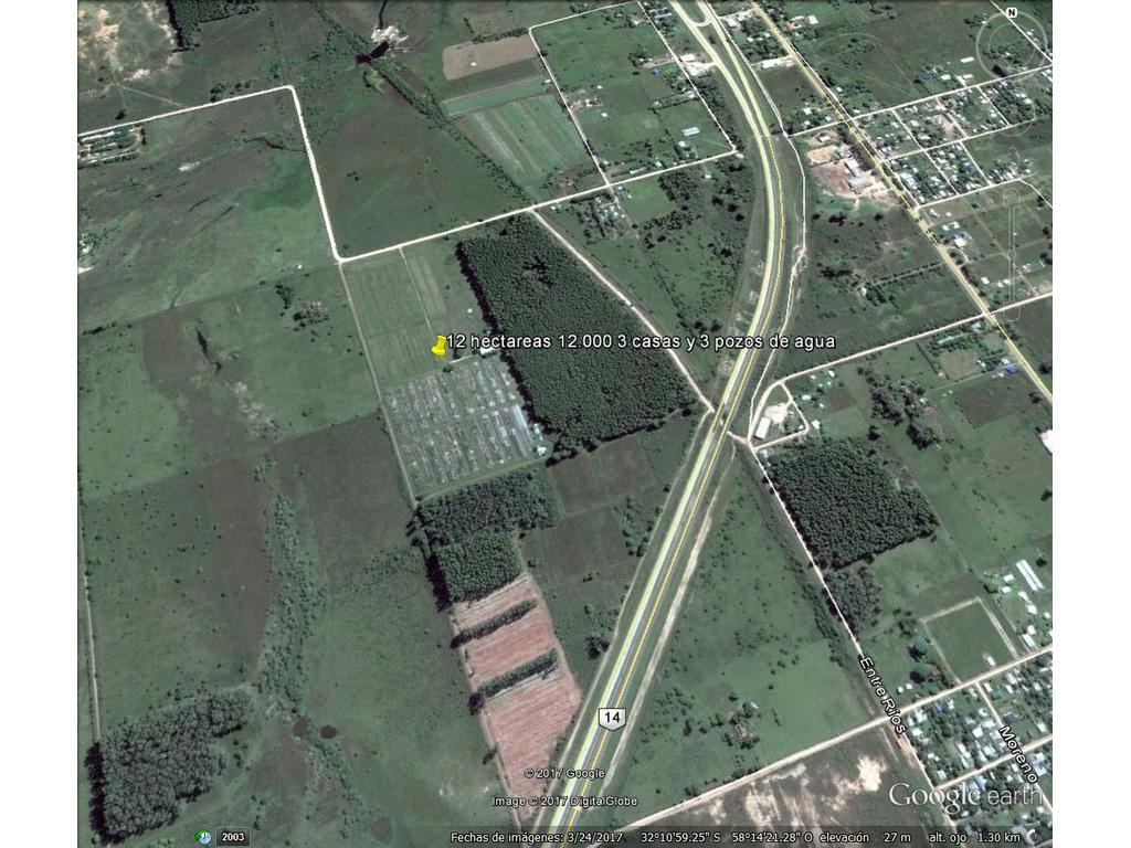 12 hectareas EXCELENTE OPORTUNIDAD
