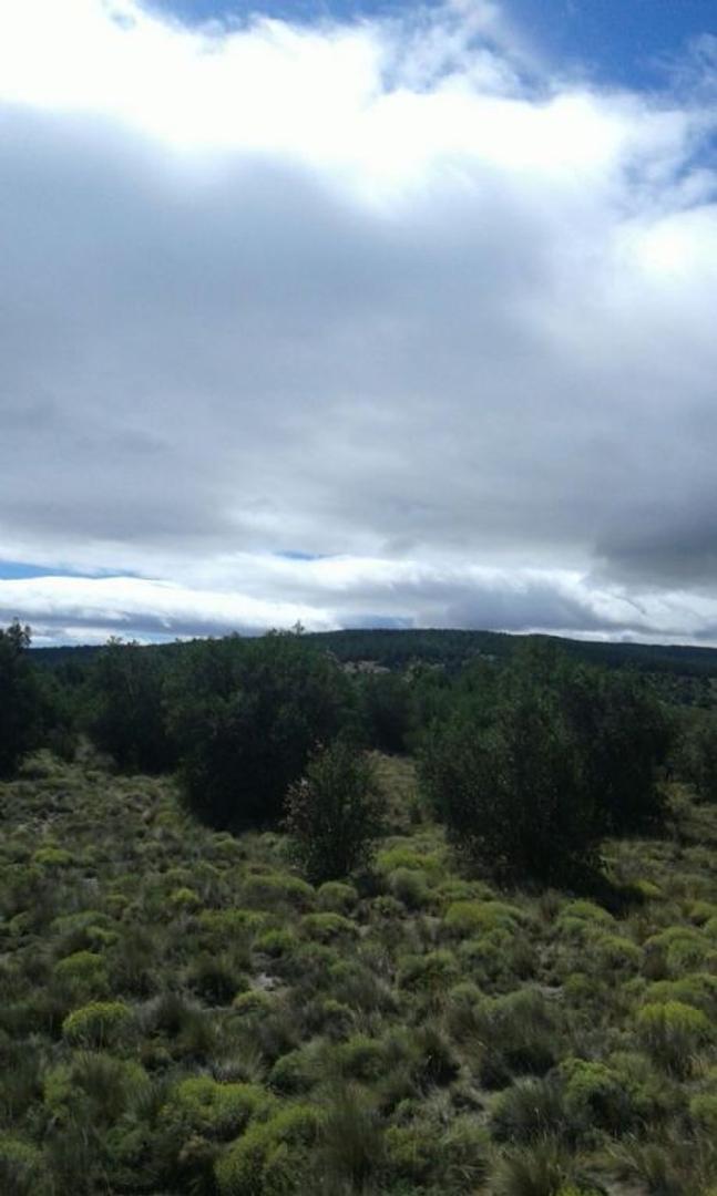 Terreno Lote  en Venta ubicado en El Pegual, San Martin de los Andes - SMA1041_LP107066_1