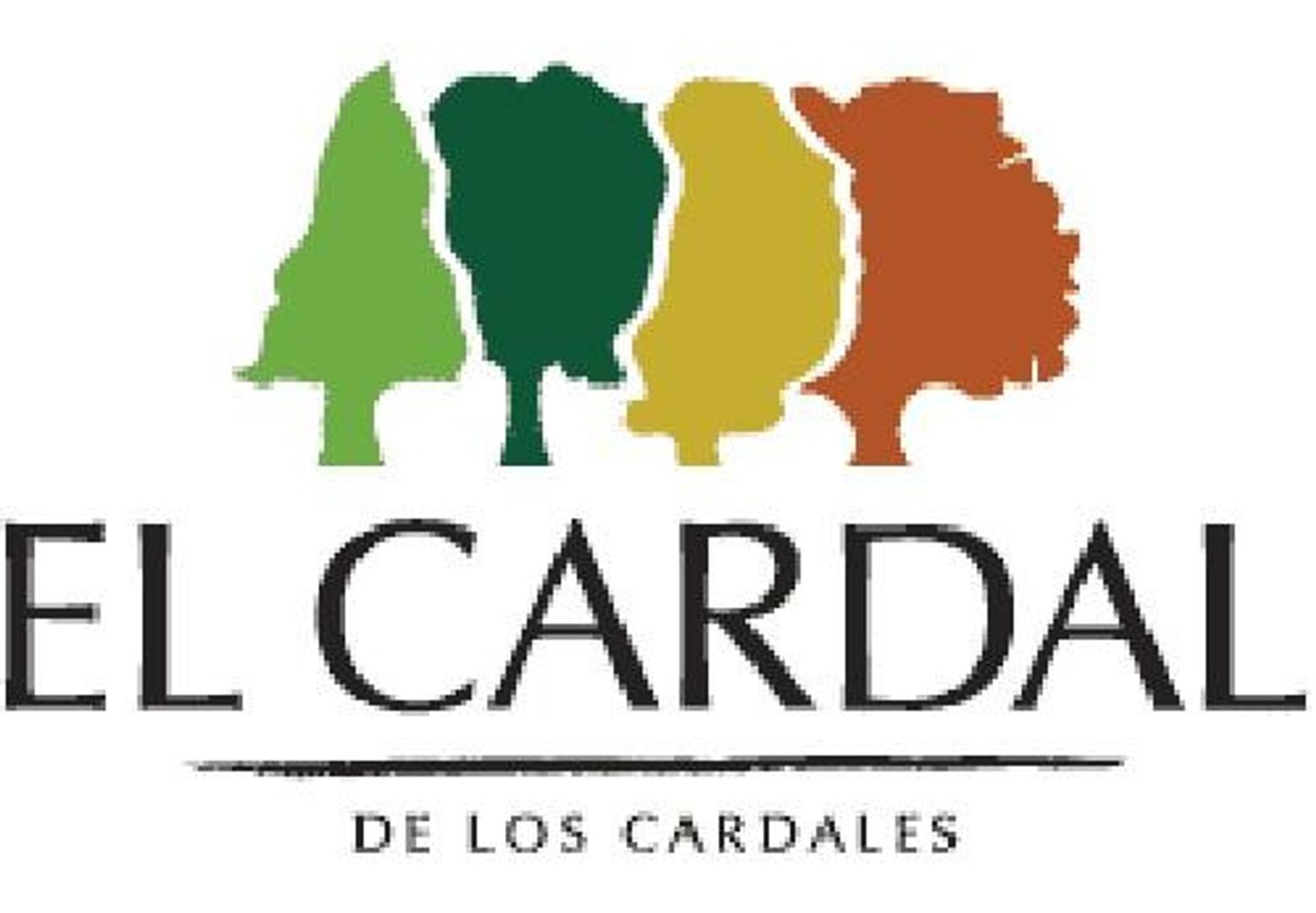 VENDO LOTE CENTRAL EN EL CARDAL 1