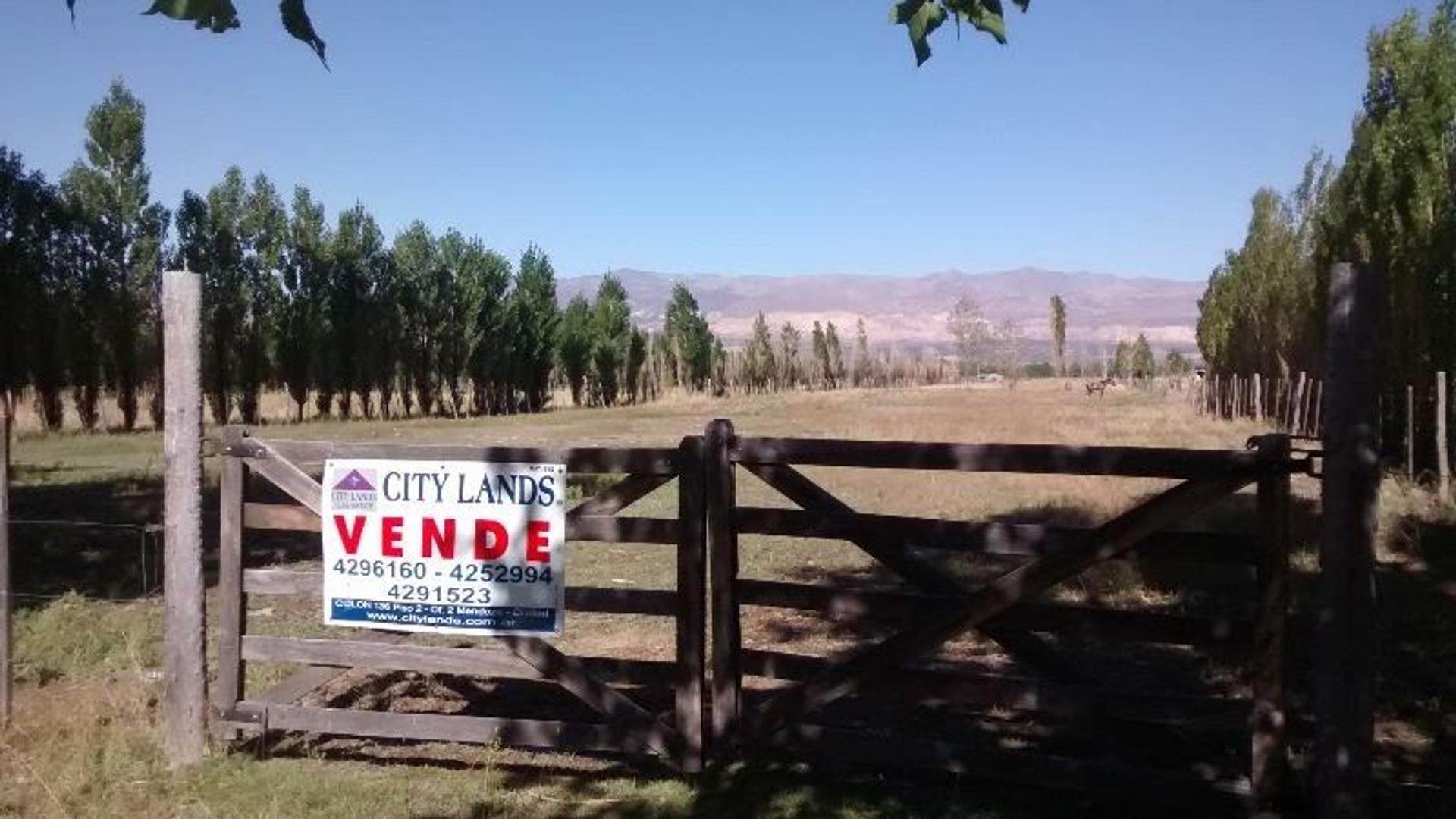 Lote en Venta en Uspallata de 4680 m2