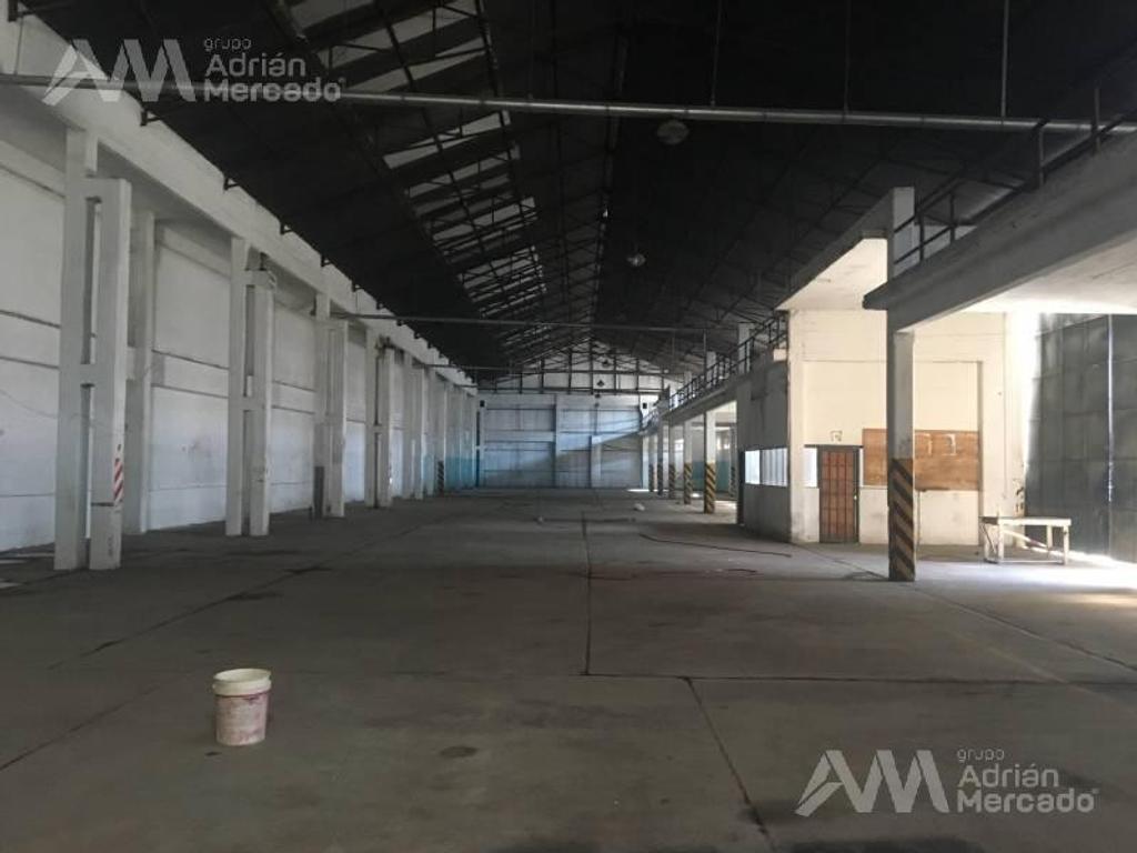Establecimiento Industrial de 1200 m2