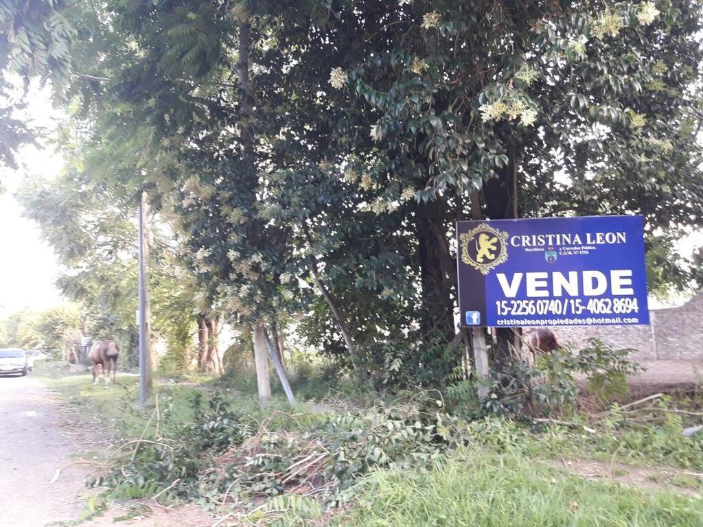 EN VENTA   DOSHERMOSOS  LOTES JUNTOS O SEPARADOS S/PARDO (  BELLA VISTA )