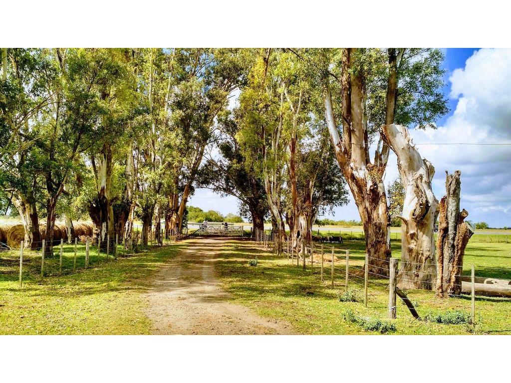 Campo en alquiler en La Plata Ruta 2 KM 74 Dacal Bienes Raices