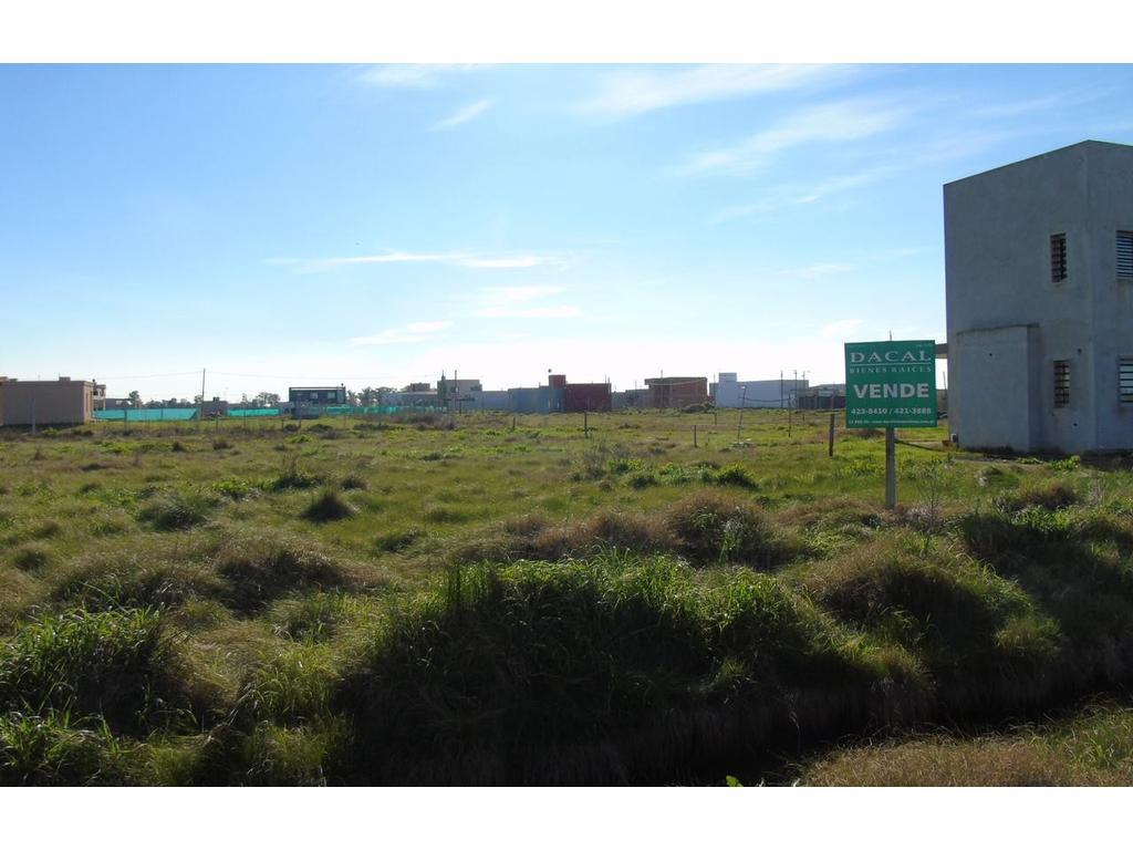 Terreno en venta  La Plata Calle 490 e/ 5 y 6 Dacal Bienes Raices