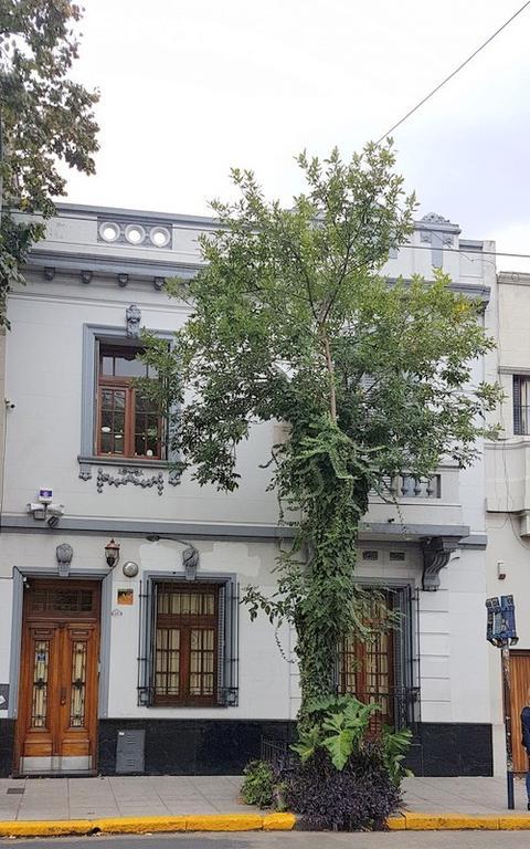 EN LA ZONA MAS RESIDENCIAL DE CABALLITO NORTE, EXCEPCIONAL CASA EN 2 PLANTAS c/ PARRILLA y JARDÍN