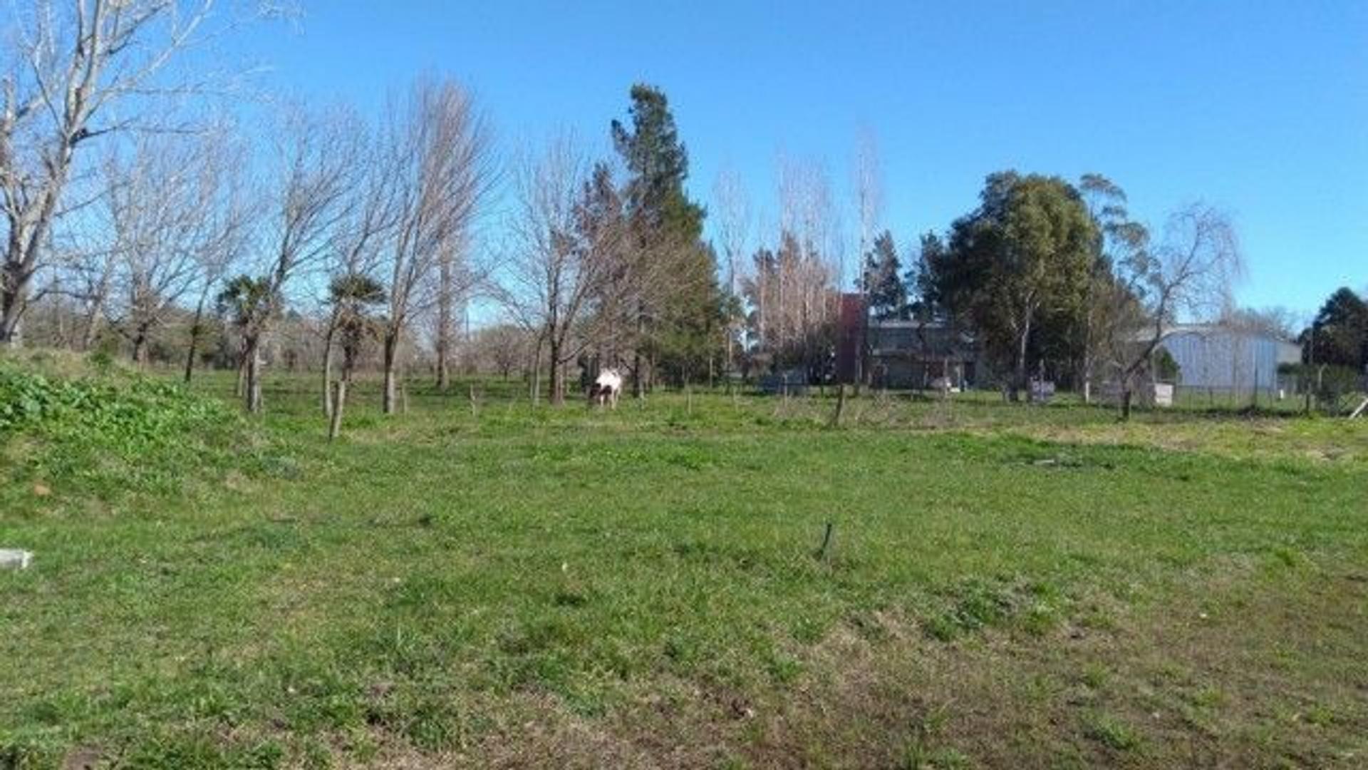 XINTEL(GNP-GNP-306) Lote - Venta - Argentina, Chascomús - Soldado Carrasco S/N