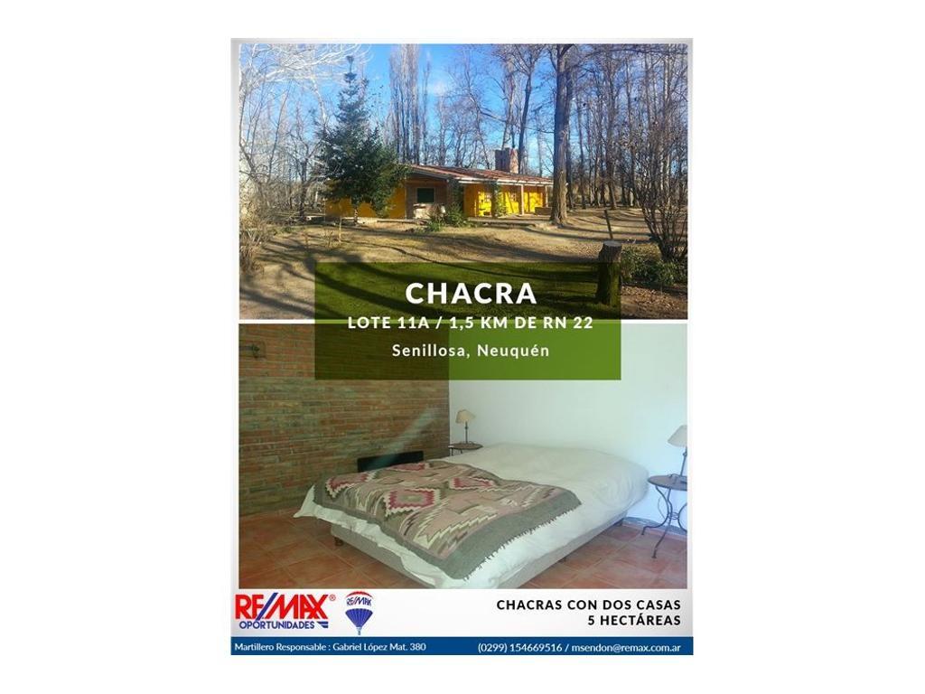 Vendo Chacra con Casa 3 D y Casa 2D en Senillosa
