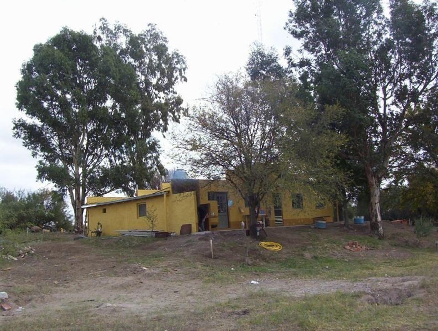 Campo en Venta en San Rafael