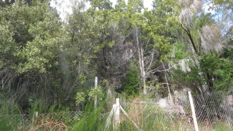 Amplio lote muy privado en Laguna del Trebol.