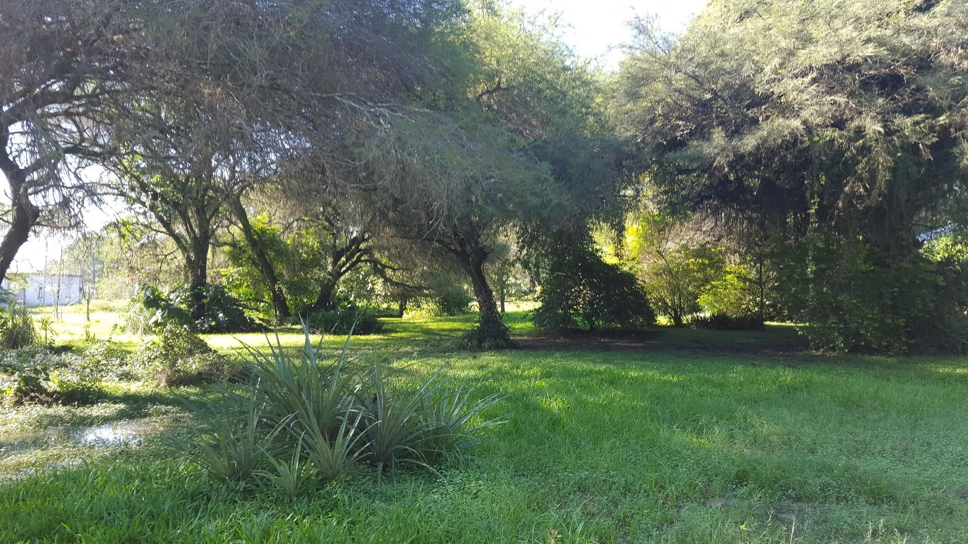 Colonia Benitez: amplio predio arbolado de 1Ha con Vivienda 2 dormitorios