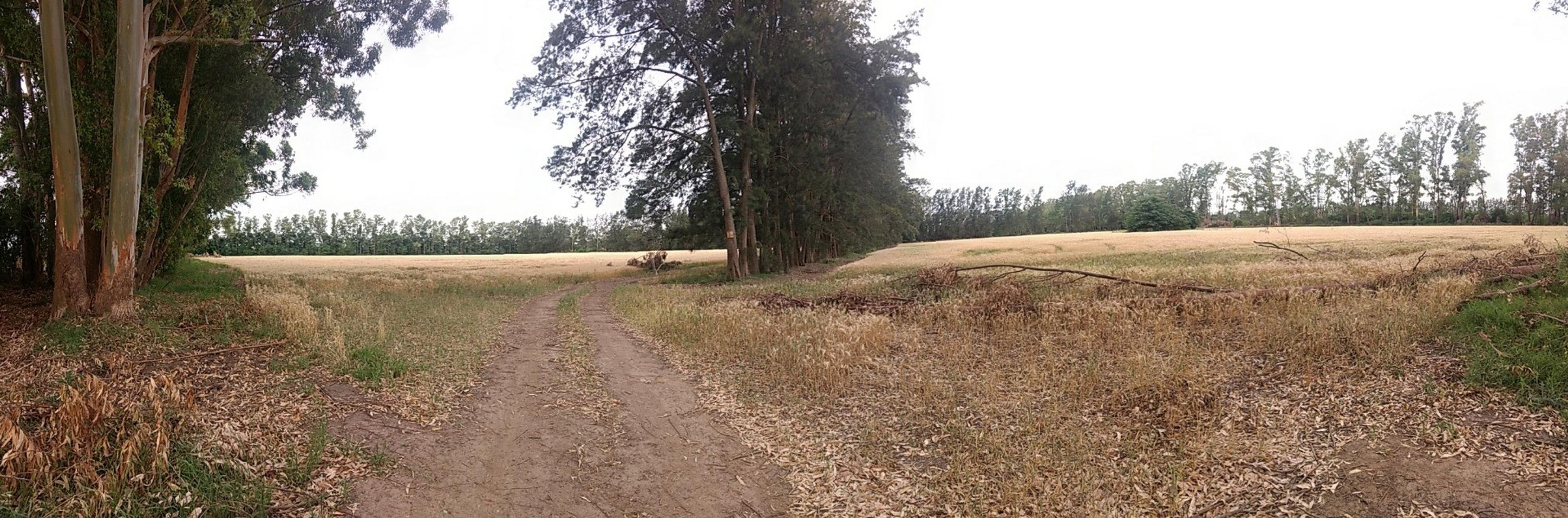 Campo en Venta en Zarate