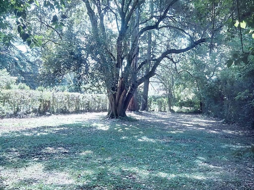 Terreno en Venta en Los Robles del Monarca- La Lonja Pdo. de Pilar