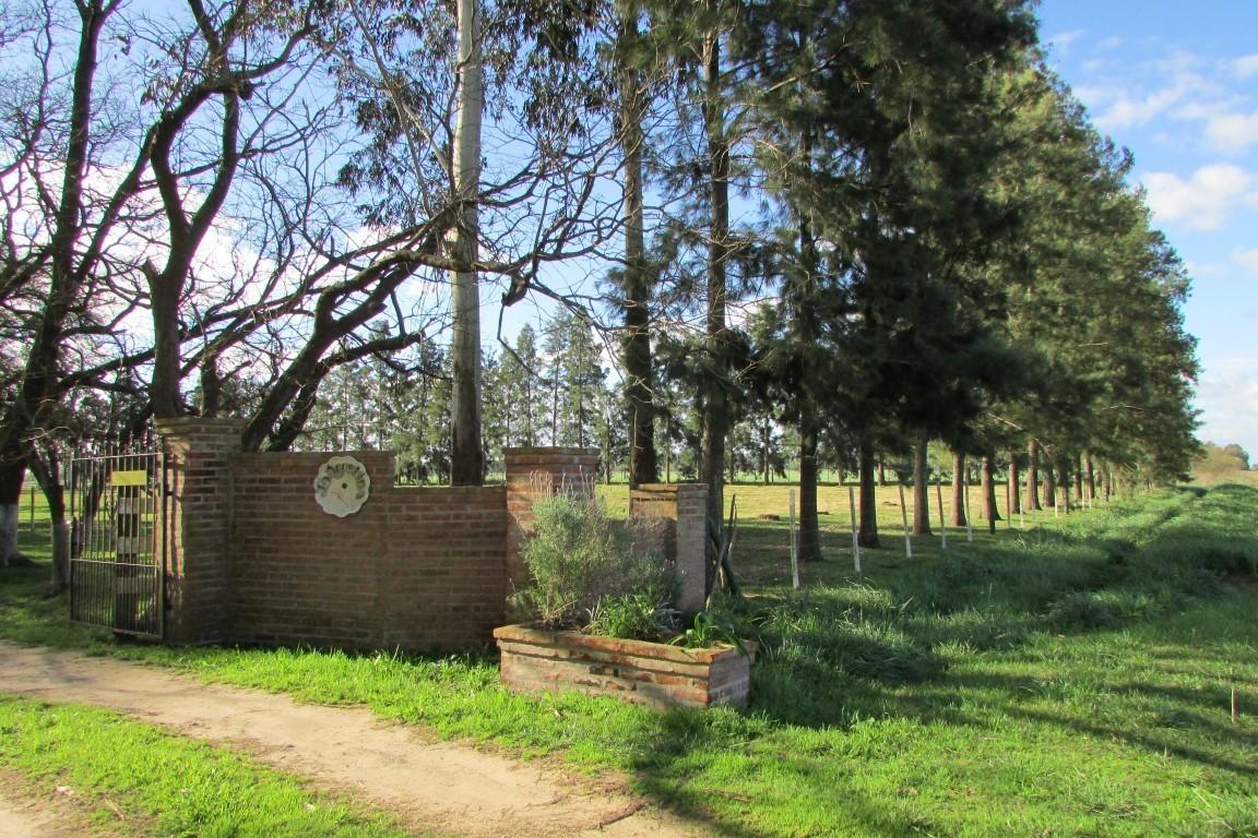 VENTA CHACRA CAMPO CON IMPORTANTES MEJORAS EN LAS CHACRAS LOBOS