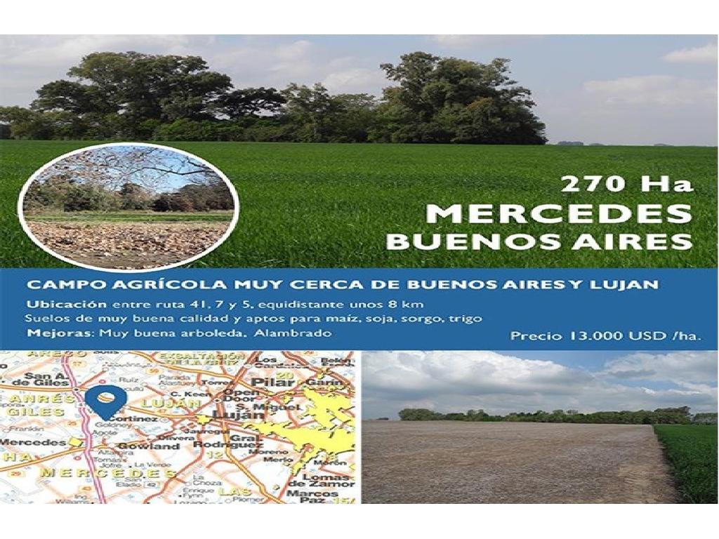 Propiedad rural en venta de 270 Ha. en mercedes partido de Mercedes.
