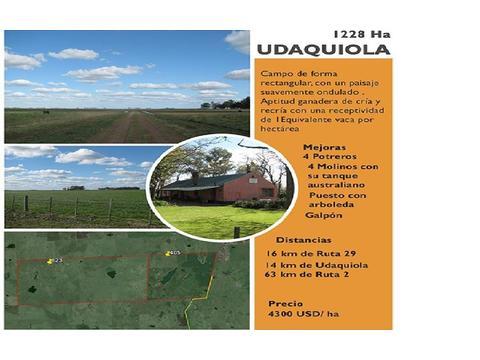 Campo en venta en udaquiola 1228 Ha.