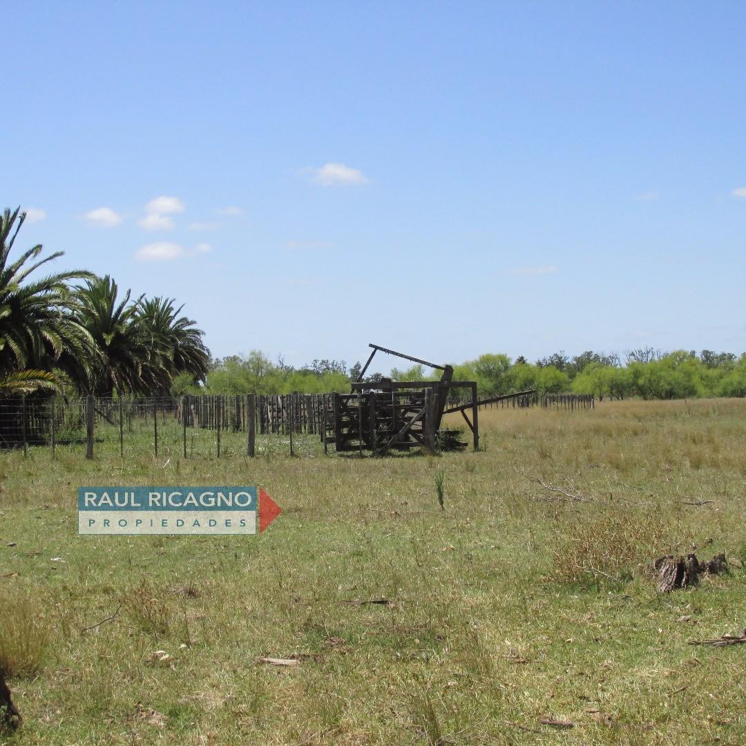 Campo en Venta -