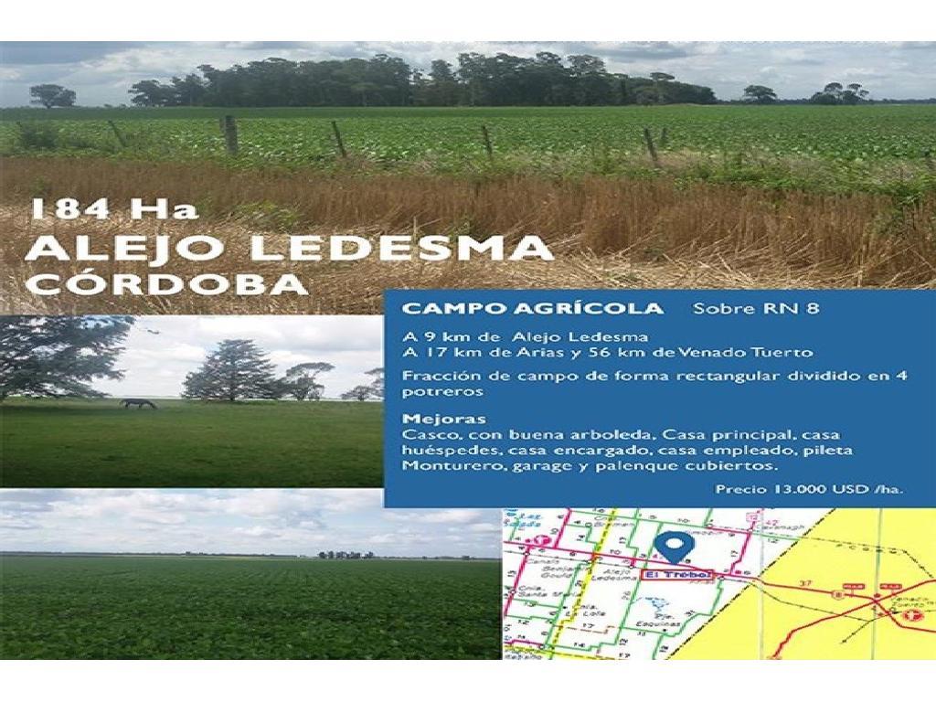 CAMPO AGRICOLA EN VENTA SOBRE RN 8 ALEJO LEDESMA CORDOBA 184 HA.