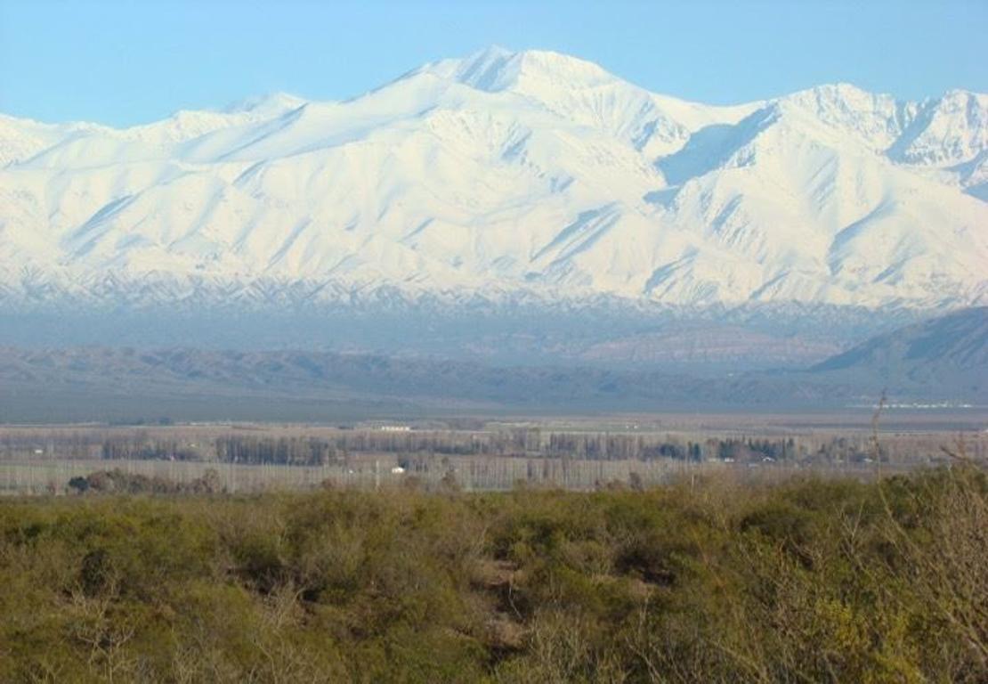 250 has Finca inculta en Agrelo, Mendoza