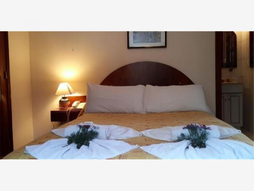 Hotel 3* 12 hab. + 5 cabañas + 4 Dtos