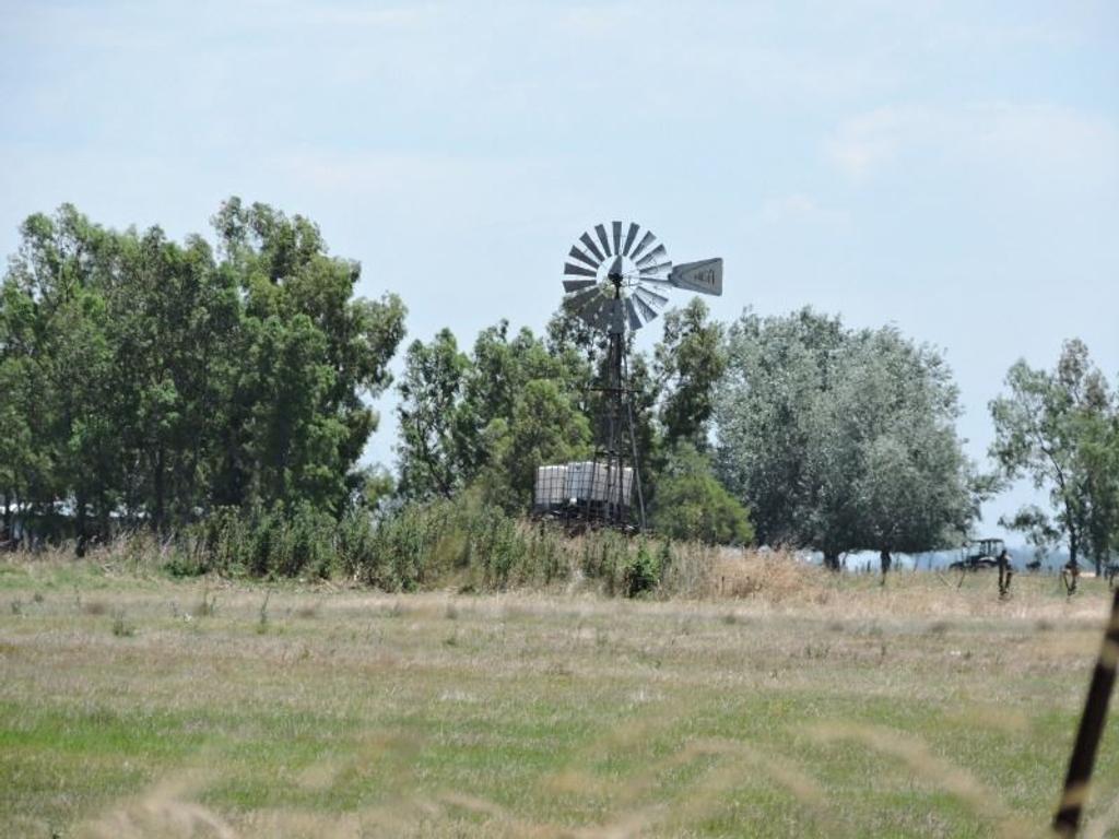 Campo 49 hectareas en Abbott.