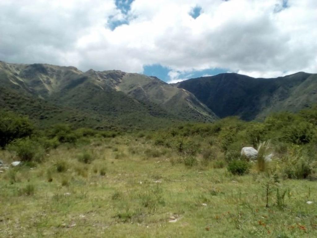 Amplio terreno (1 ha) en lugar paradisíaco de San Luis (Cortaderas)
