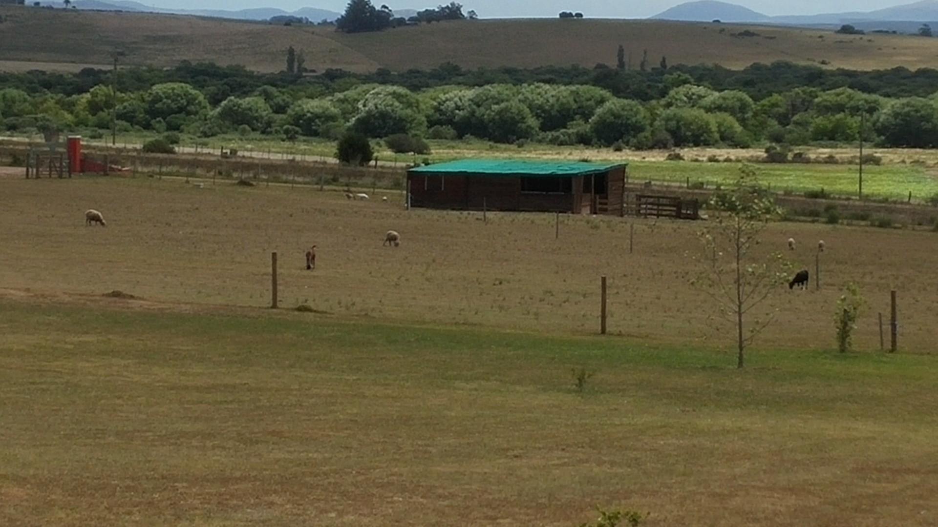 Vendo/permuto Chacra/Casa Quinta Vacacional Campo c/piscina en Maldonado Uruguay
