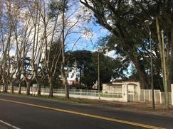 Local - Punta Chica