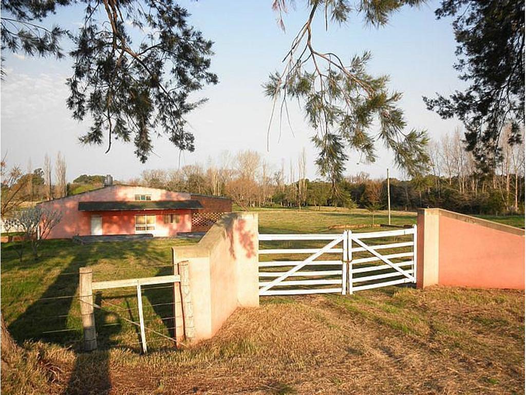 Local de 520 m2. Zona: ValdensePrecioso entorno de arboles frutales, sobre ruta excelente acces...