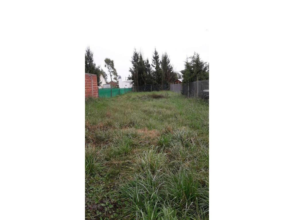 Terreno en venta en La Plata Calle 669 e/ 10 y 11 Dacal Bienes Raices