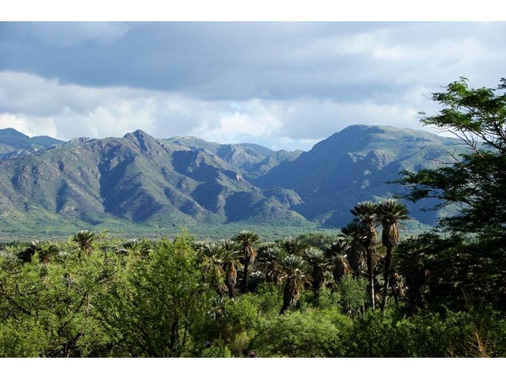 Terreno/campo de casi 3has, en San Fco del monte de Oro, S.L