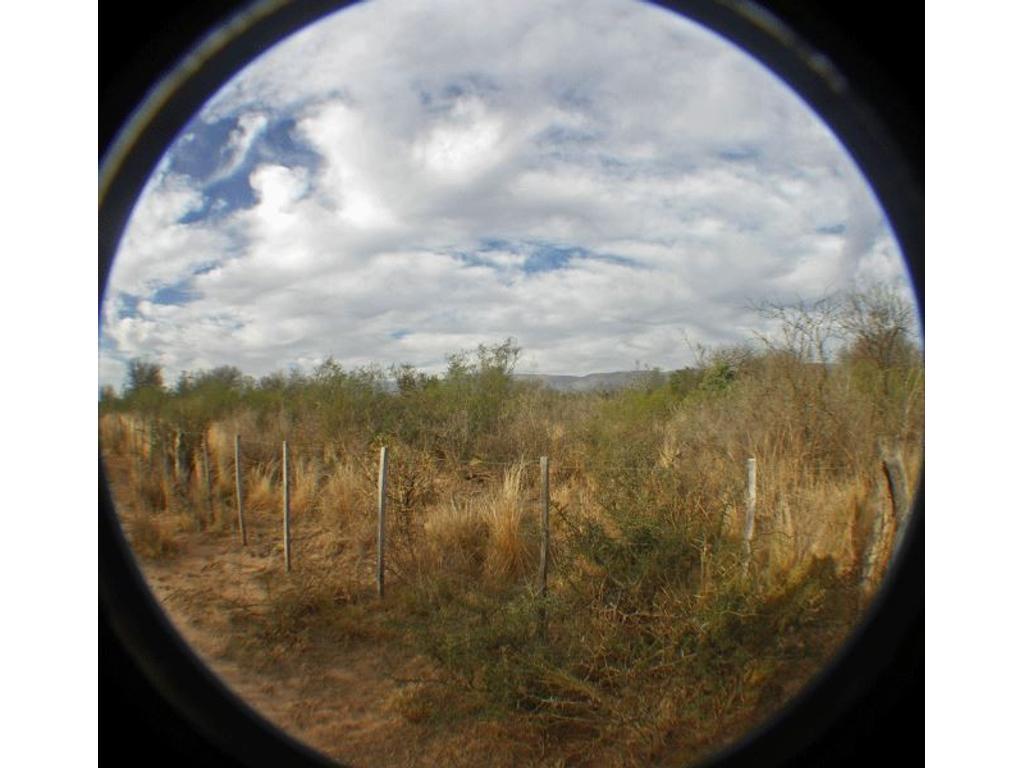 50 hectareas - Ruta 148