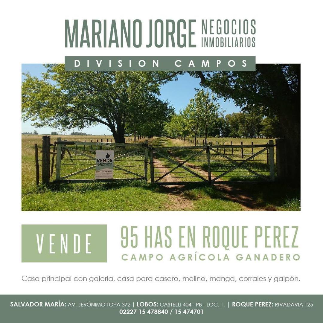 Campo en Venta en Roque Perez