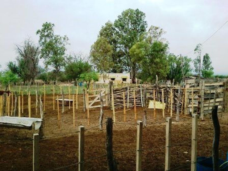 Venta Exxcelente Campo 2700 hectáreas